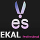 EKAL Surgical Works... logo